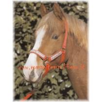 Cavezza Pony Lamicell con lunghina -Selleria Romani tempo libero - Selleriainternet.it