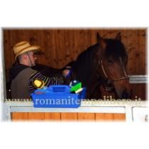 Vaschetta grooming da box -Selleria Romani tempo libero - Selleriainternet.it