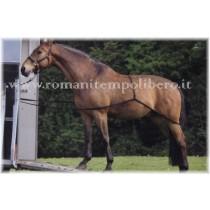 Sistema per far salire il cavallo sul trailer -Selleria Romani tempo libero - Selleriainternet.it